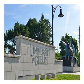 Guelph Üniversitesi Kanada